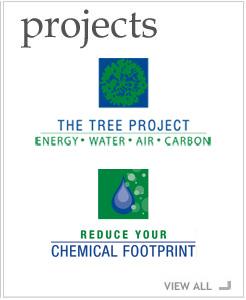 projectsmain