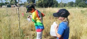 Wheat Ridge Greenbelt Restoration